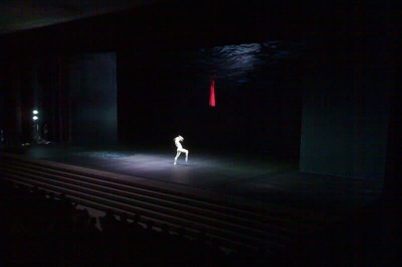 Tamara rojo bailarina ballet