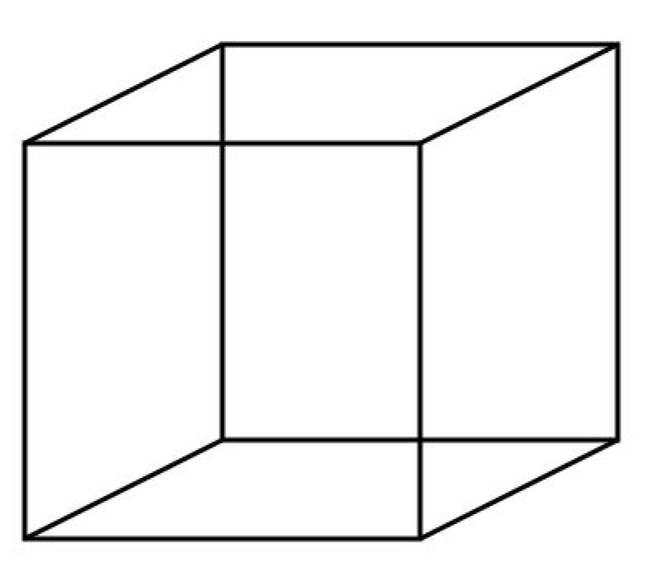 Cubo necker ilusion