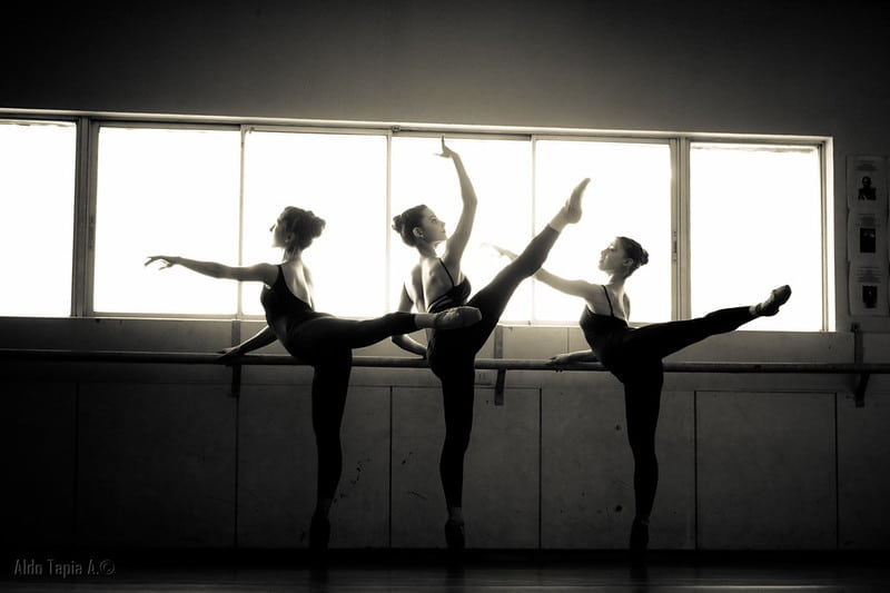 barras ballet 2020
